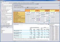XBRL Report Editor